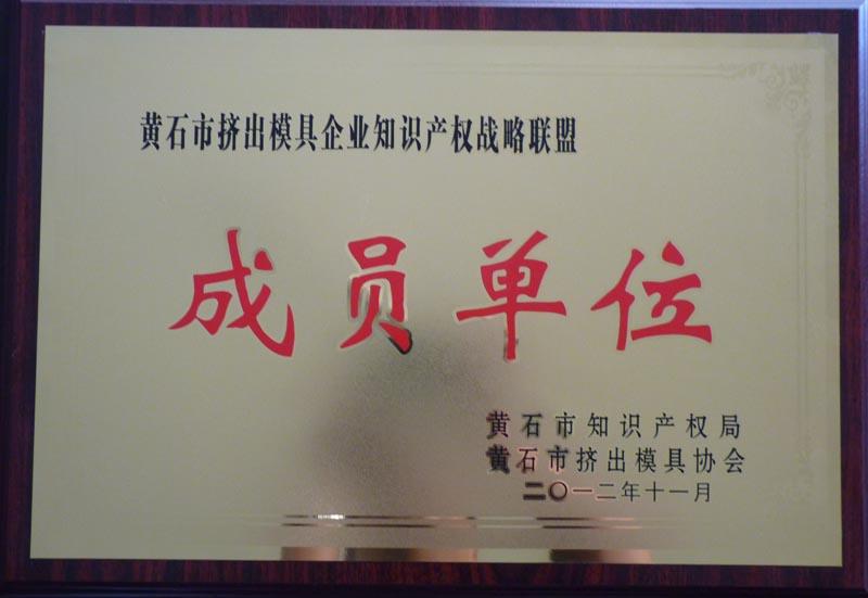 黄石市挤出12博手机入口知识产权战略联盟成员单位